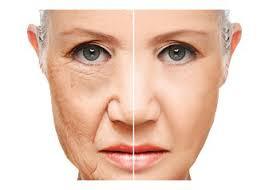 Terapia anti aging